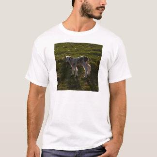 Newborn lamb T-Shirt