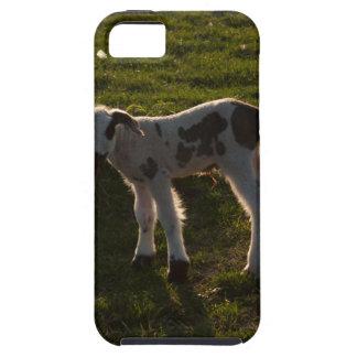 Newborn lamb tough iPhone 5 case