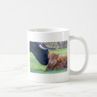 Newborn scottish highlander calf with mother cow coffee mug