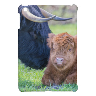 Newborn scottish highlander calf with mother cow iPad mini covers