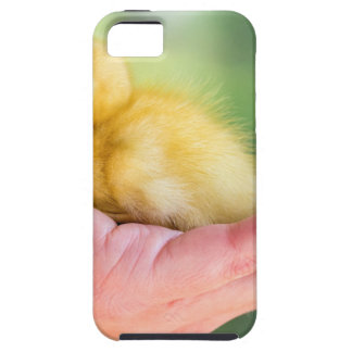 Newborn yellow duckling sitting on hand case for the iPhone 5