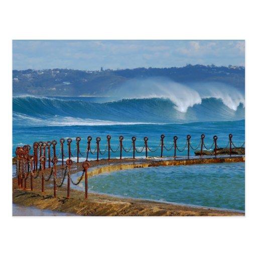 Newcastle beach from the canoe pool postcard zazzle for Beach house designs newcastle