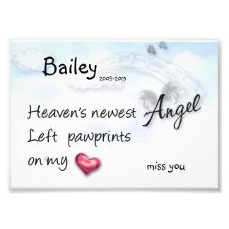 Newest Angel left paw prints on my heart print Photo Art