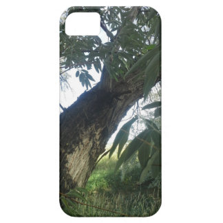 Newest category---Landscape Photography trees iPhone 5 Cases