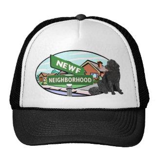Newf Neighborhood Mesh Hat