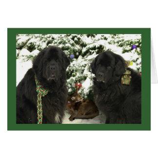Newfie Christmas Card
