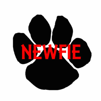 newfie name paw photo sculpture key ring