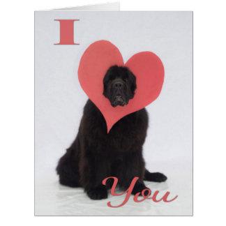 Newfie Valentine Card