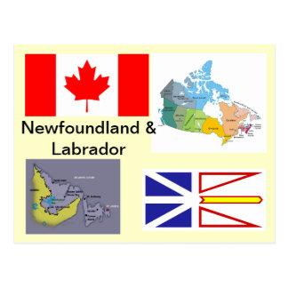 Newfoundland and Labrador Canada Postcard