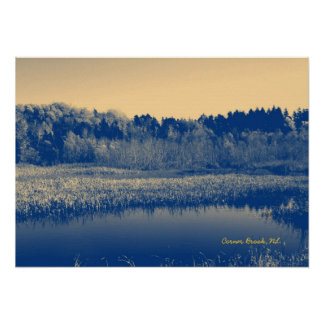 Newfoundland, Canada, Marshlands Trees and Water Poster
