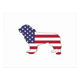 "Newfoundland Dog - ""American Flag"" Postcard"