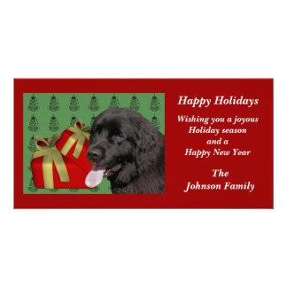 Newfoundland Dog Animal Christmas Holiday Card Photo Greeting Card