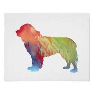 Newfoundland Dog Art Poster