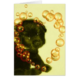 Newfoundland Dog~ Blank Greeting Card