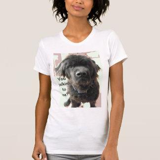 Newfoundland Dog humor shirt