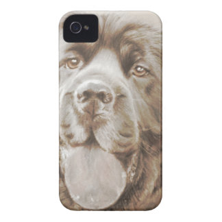 Newfoundland dog iPhone 4 cover