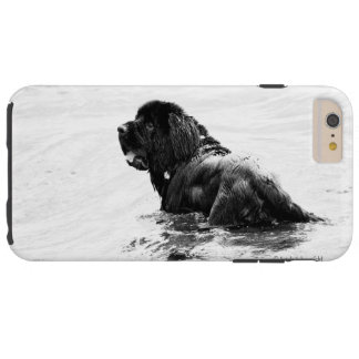 Newfoundland Dog Phone Case