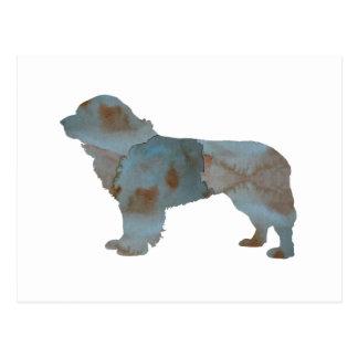 Newfoundland Dog Postcard