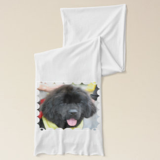 Newfoundland Dog Scarf
