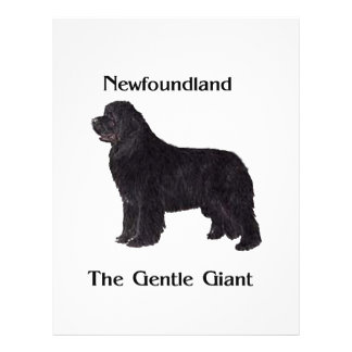 Newfoundland Dog The Gentle Giant 21.5 Cm X 28 Cm Flyer