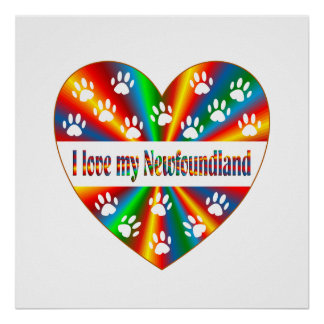 Newfoundland Love Poster