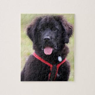 Newfoundland puppy dog cute photo jigsaw jigsaw puzzle