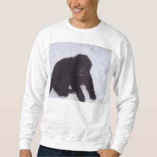 Newfoundland_puppy Sweatshirt
