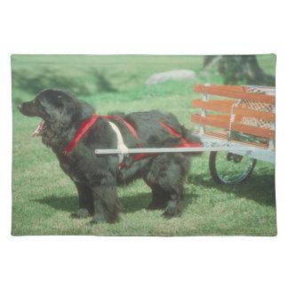 Newfoundland with Cart Dog Placemat