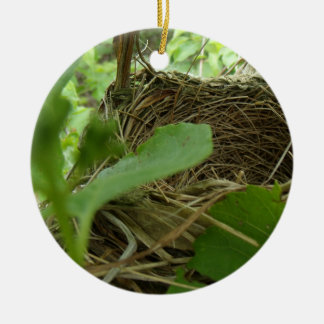 Newly Built but Empty Bird Nest in a Mulberry Tree Ceramic Ornament
