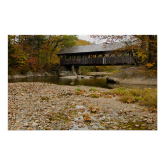 Newry Covered Bridge over river in autumn Print
