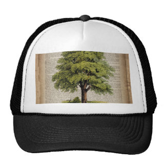 newspaper french botanical art vintage oak tree hat