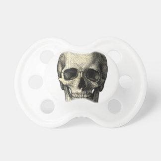 Newspaper skull dummy