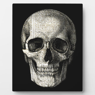Newspaper skull plaque