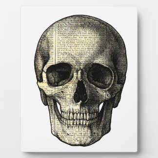 Newspaper skull plaque