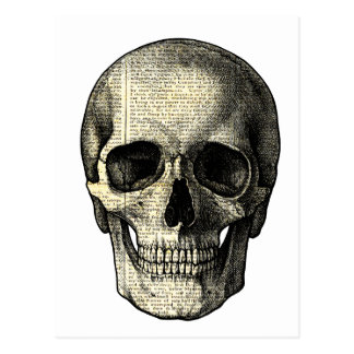 Newspaper skull postcard