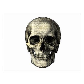 Newspaper skull postcard