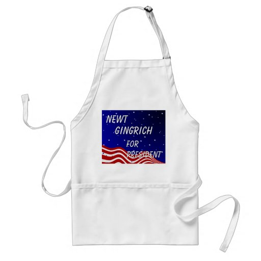 Newt Gingrich For President Night Sky Aprons