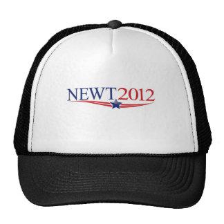 Newt Gingrich President 2012 Cap
