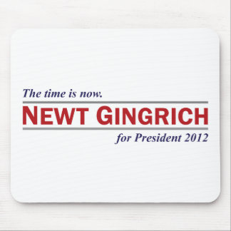 Newt Gingrich The Time is Now President 2012 Mouse Pads