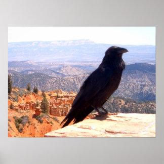 NG Crow Print