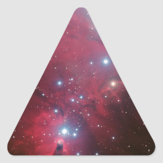 NGC 2264 and the Christmas Tree cluster Triangle Sticker