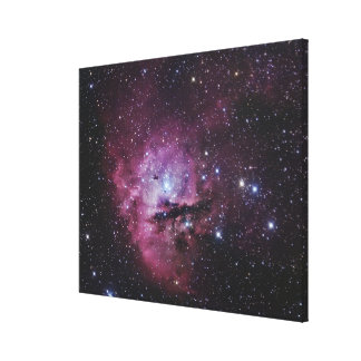 NGC 281, Emission Nebula and Open Cluster in Cassi Stretched Canvas Print