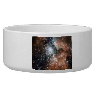 Ngc 3603 Emission Nebula Pet Food Bowls