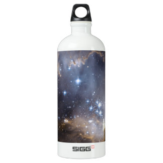 NGC 602 bright stars SIGG Traveller 1.0L Water Bottle