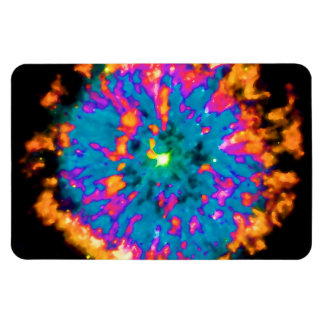 NGC 6751 Planetary Nebula Pop Art Vinyl Magnet