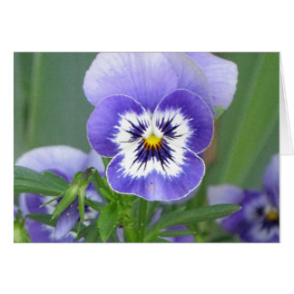 NH Purple Pansy Garden Art NoteCards Note Card