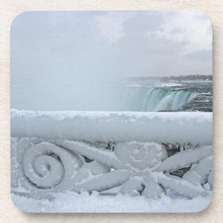 Niagara Coaster