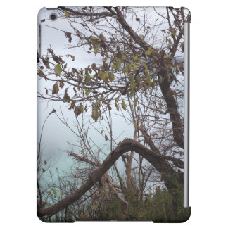 Niagara Falls iPad Air Case
