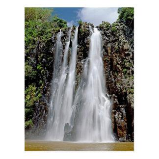 Niagara falls,Reunion Postcard