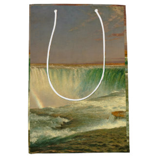 Niagara Falls Waterfall River Gift Bag